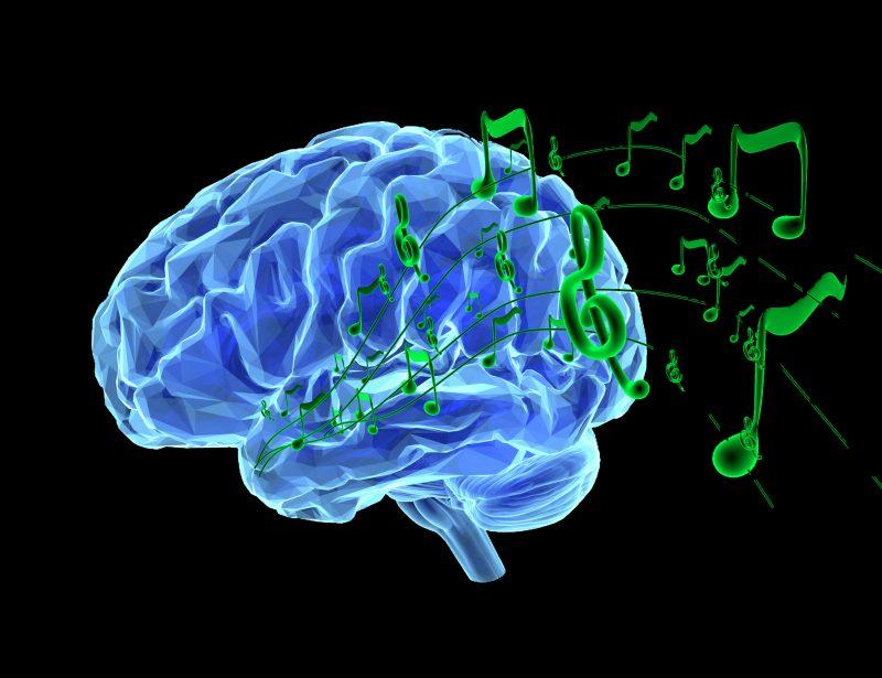 Musik ist eine unglaubliche Leistung des Gehirns