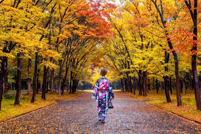 Waldbaden: In Japan aktiv und täglich praktiziert